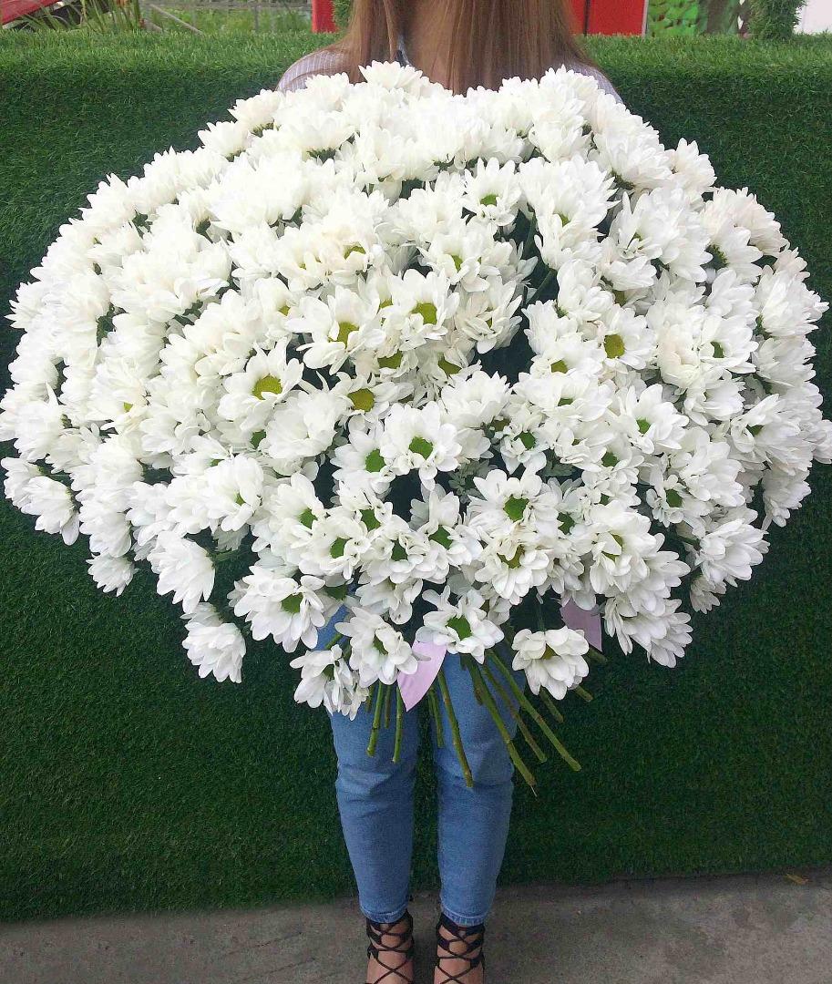 Для букета, как выглядит букет из 31 хризантемы